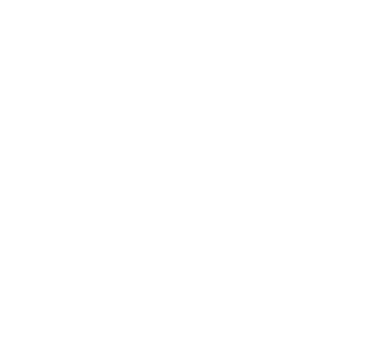 AIM18